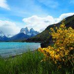 Torres del Paine | zenmotero