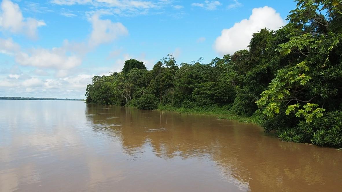 Rio Madeiro River Banks